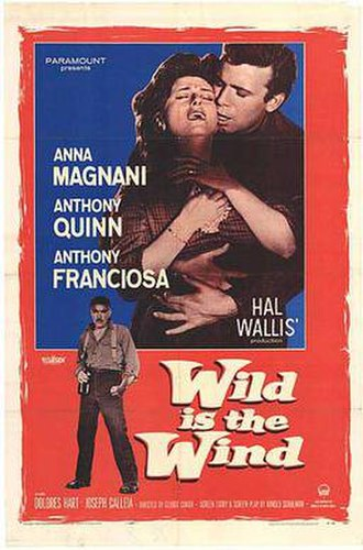 Wild Is the Wind - Image: Poster of the movie Wild Is the Wind