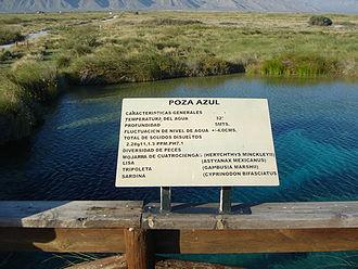 "Cuatro Ciénegas - ""Poza Azul"" pool"