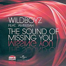 The-Sound-of-Missing-You-Wildboyz-featuring-Ameerah.jpg