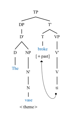 Causative alternation - Image: The vase broke Syntactic Tree