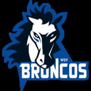 WSV Sterzing Broncos - Image: WSV Sterzing Broncos logo