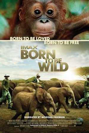 Born to Be Wild (2011 film) - Theatrical release poster