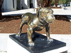 History of The Citadel, The Military College of South Carolina - The Citadel bulldog mascot
