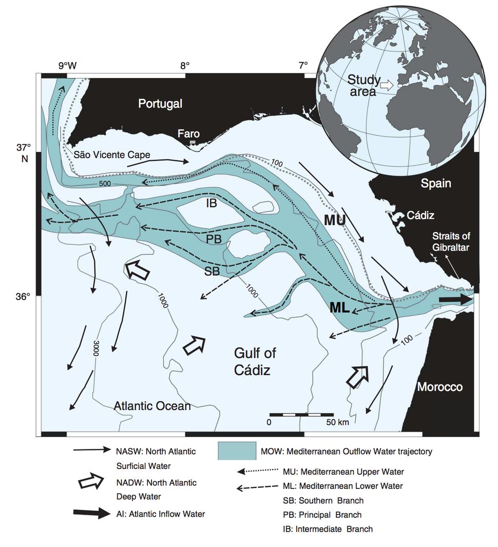 Contourite bottom water flow IODP Gulf of Cadiz