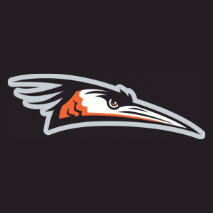 Delmarva Shorebirds - Image: Delmarva Shorebirds Cap Logo