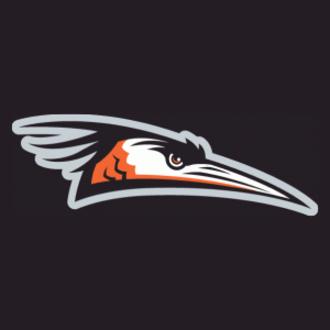 Delmarva Shorebirds - Image: Delmarva Shorebirds Cap Logo