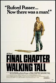 Film Poster for Walking Tall Final Chapter.jpg