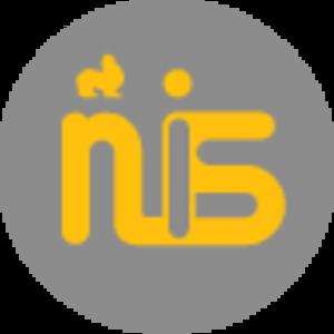Nanjing International School - Image: New NIS Logo