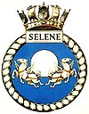 SELENE badge-1-.jpg