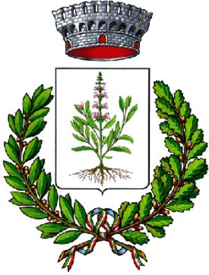 Savoia di Lucania - Image: Savoia di Lucania Stemma