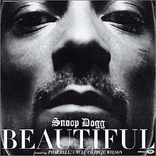 Snoop Dogg featuring Pharrell & Uncle Charlie Wilson — Beautiful (studio acapella)