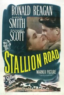 Stallion Road FilmPoster.jpeg