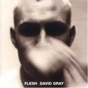 Flesh (album) - Image: Flesh David Gray