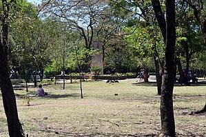 Nakuru - Nyayo gardens