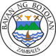 Official seal of Botolan