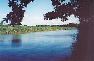 Rio de la Plata (Puerto Rico) - La Plata River (2005)