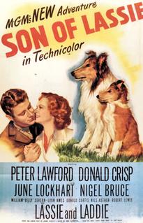 1945 film by S. Sylvan Simon