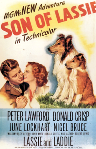 Son of Lassie - Theatrical release poster