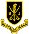 The Coat of Arms of the National Society of Blackjacks
