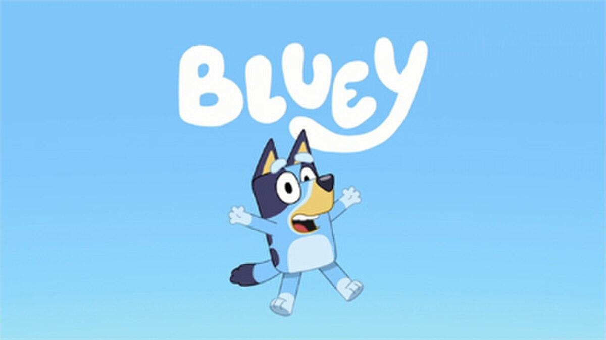 Bluey (2018 TV Series)