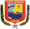 Coat of arms of Punta Hermosa