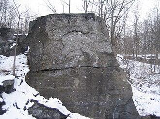 Chazy Formation - Stromatoporoid at Fisk Quarry, Isle La Motte, Vermont