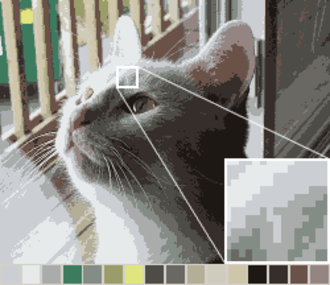 Color quantization - The same image reduced to a palette of 16 colors specifically chosen to best represent the image; the selected palette is shown by the squares above