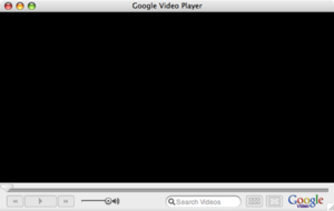 Google Video - Google Video Player main window