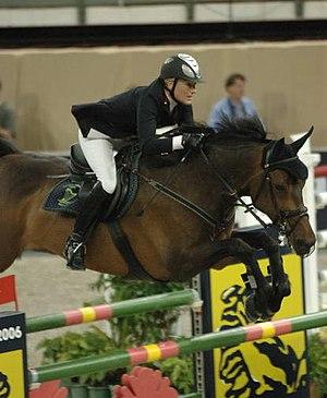 Sport horse - A warmblood sport horse shown over fences.