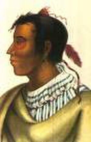 Potawatomi - Metea