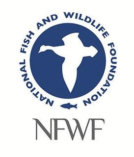National Fish and Wildlife Foundation organization