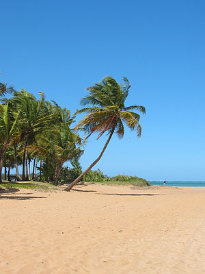 A view of Luquillo Beach
