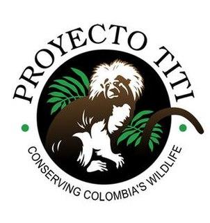 Proyecto Tití organization