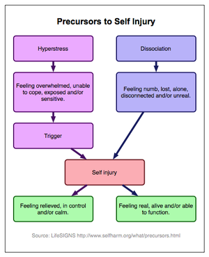 A flow diagram of two theories of self-harm.