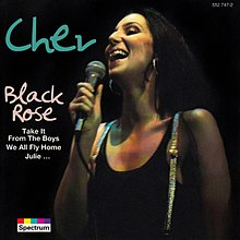 Reissue album artwork, featuring only the face of Cher.