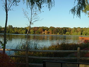 High Park - Grenadier Pond from the southern shore