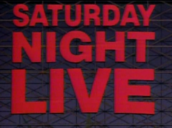The title card for the tenth season of Saturday Night Live.