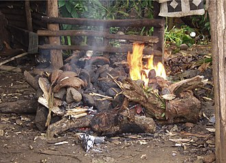 Earth oven - A Samoan 'umu at the early stage of heating the rocks
