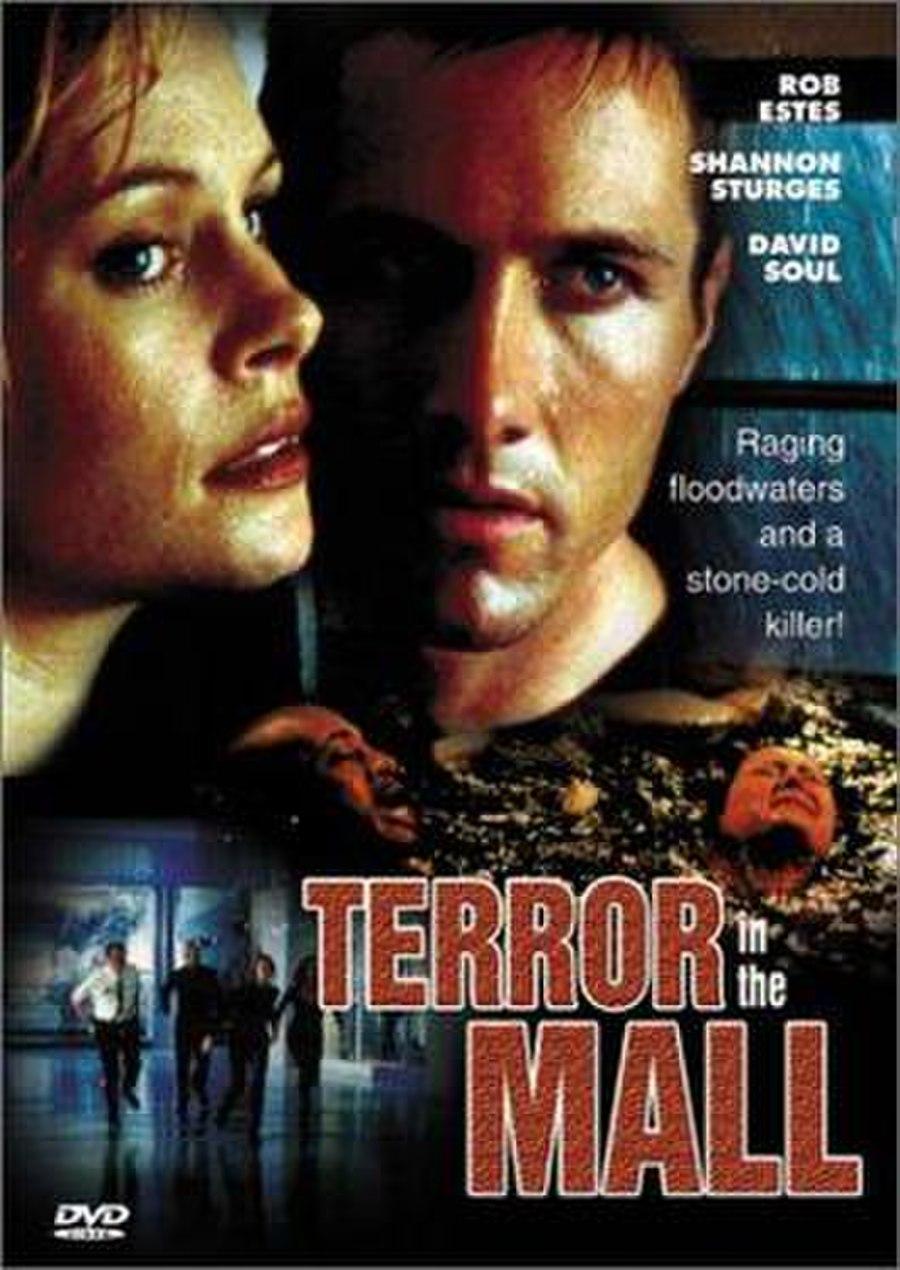 Terror in the Mall