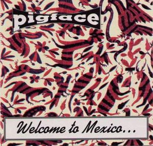Welcome to Mexico... Asshole - Image: Welcome to Mexico... Asshole
