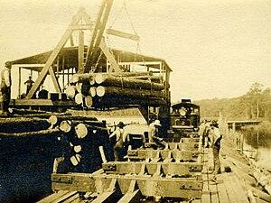 Buffalo City, North Carolina - Sawmill in Buffalo City, North Carolina, c. 1909