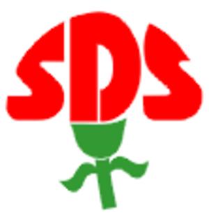 Party of Democratic Socialism (Czech Republic) - Image: Strana demokratického socialismu