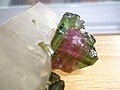 Watermelon Tourmaline.JPG