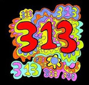 313 (album) - Image: Wik 313cover