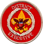 District Executive.png