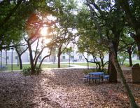 Heritage Park on the Boca Raton Campus