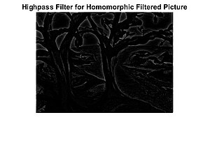 Homomorphic filtering - Figure 3: Applying high-pass filter to figure 2