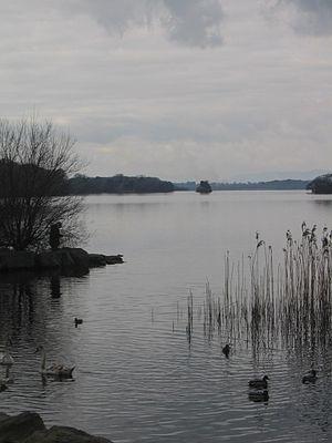 Innisfallen Island - View of Innisfallen Island from Ross Castle
