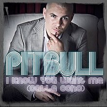 Pitbull i know you want me cover.jpg