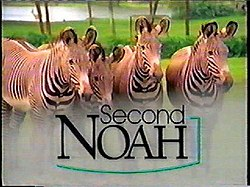 Secondnoah.jpg